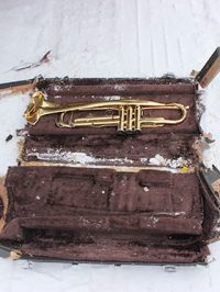 Musica Olycksskydd